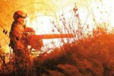 阿坝突出火源管控 31年无重特大森林火灾
