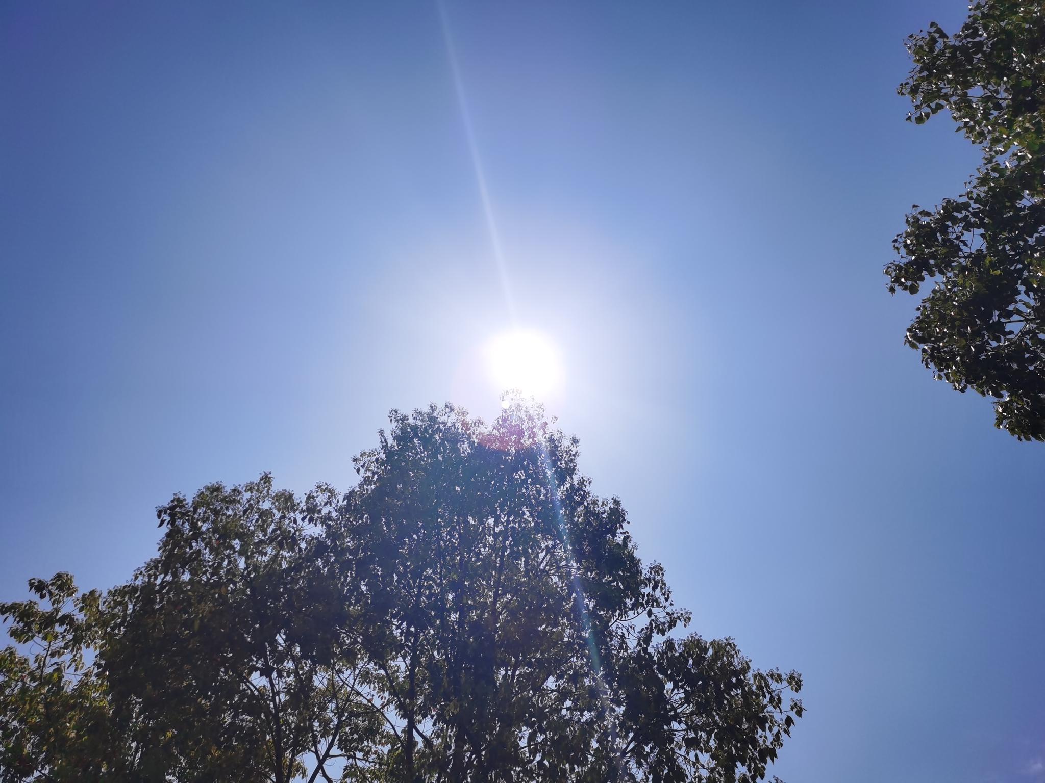 """全国多地""""跑步""""入春 预计今年夏季全国大部气温偏高"""