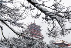 山东蓬莱雪景美如仙境