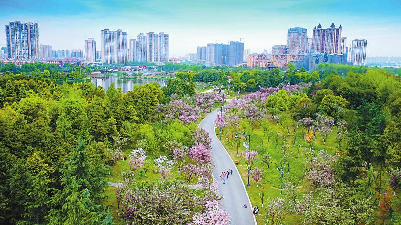 今年上半年 四川民营经济增加值占比56.4%