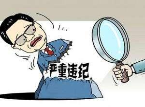 四川省食药监管理局原巡视员陈勇 接受审查调查