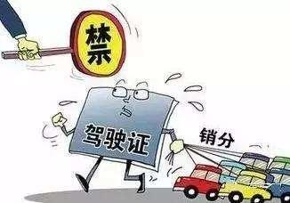 驾照买分卖分 杭州5名黄牛和相关人员被擒