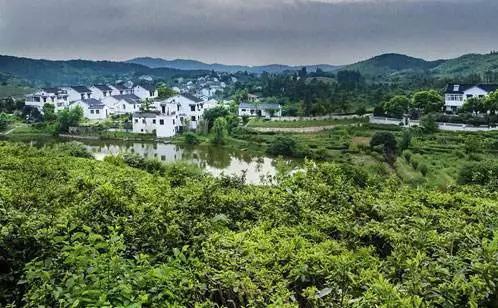 四川乡镇行政区划改革背后:总数高居全国第一 近二三位之和