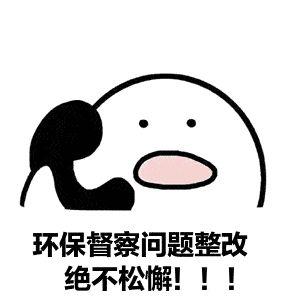 中央第五生态环境保护督察组向四川移交第十五批信访件110件