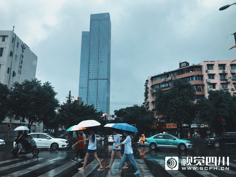 蓉城周末秋雨绵绵