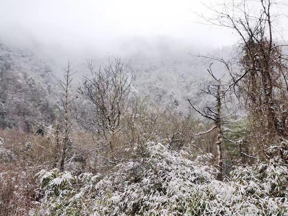 预计12月四川有4次降温降水过程 6市气温偏低14市州雨雪偏多
