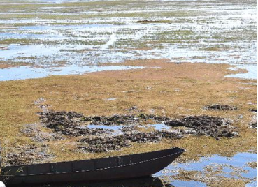 巴中通报十起典型环境违法案件 养殖废水直排被罚15万元