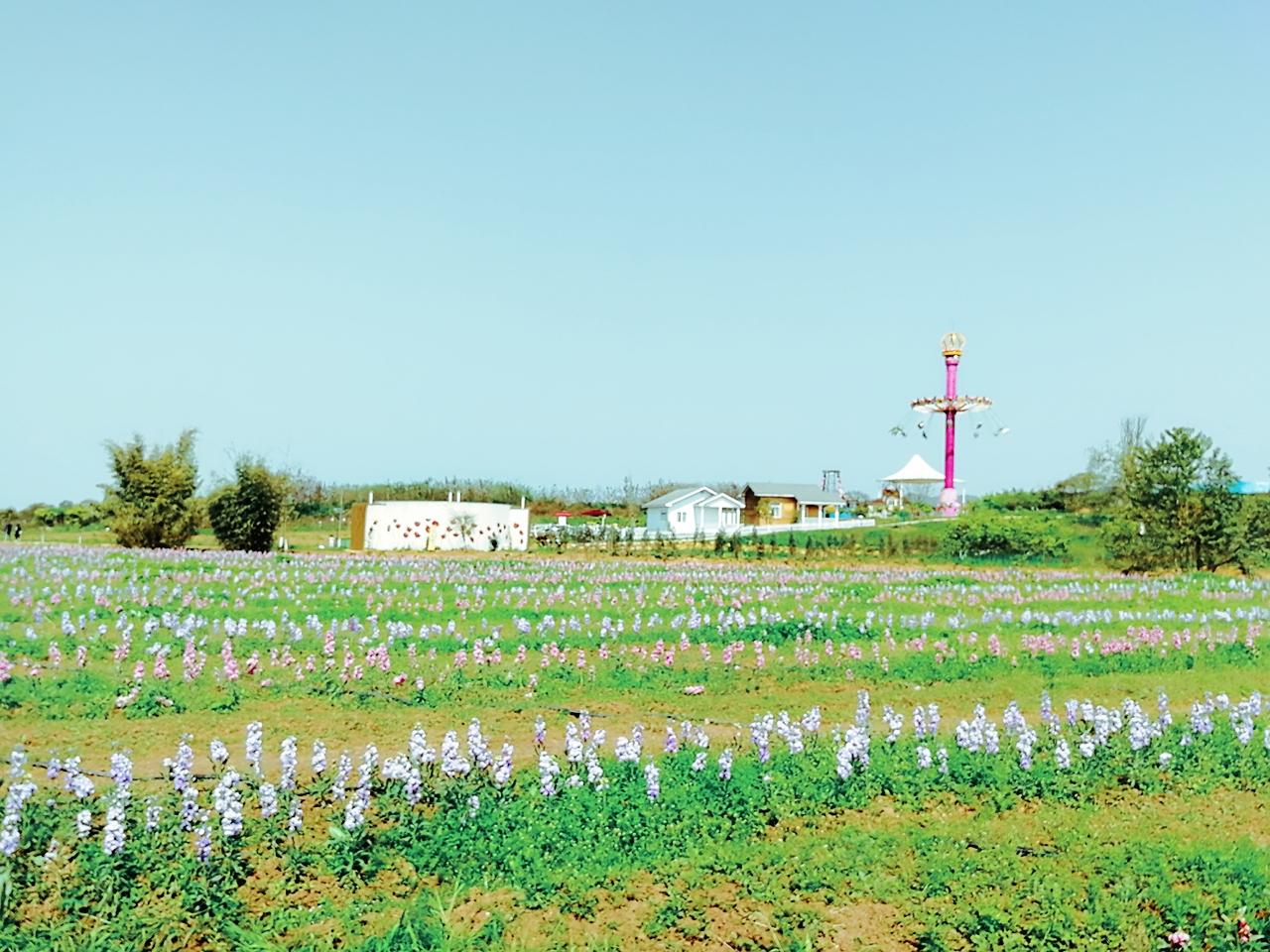 第二批全国乡村旅游重点村名单公示 四川23个乡村入选