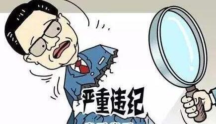 德阳市罗江区人大常委会党组副书记、副主任唐维露接受纪律审