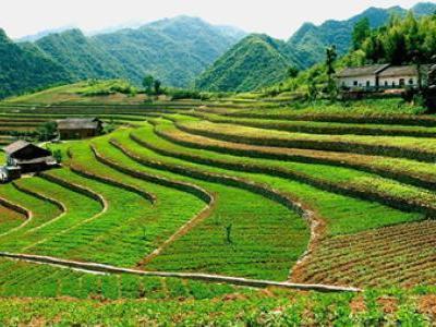 四川耕地保护责任目标考核出新规 突出问题将暂停土地征收审批