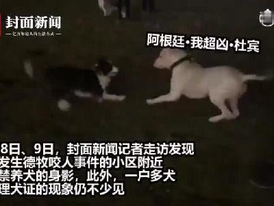 炫乐彩票禁养犬收容处置大限将近 狗主人:不会送走的