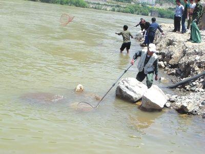 自贡男子非法捕鱼4公斤 被控增殖放鱼3万尾并面临刑事判处