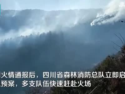 现场视频-四川凉山突发森林火灾 千余人参与扑救