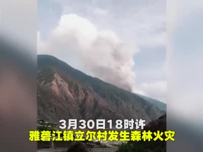 视频:四川凉山发生森林火灾 30名扑火人员突遇山火爆燃失联