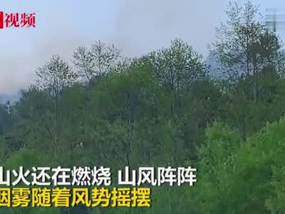 视频 四川越西近400人扑救山火 四个起火点已经灭了三个