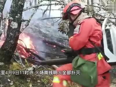 视频:四川冕宁森林火灾明火得到控制 550余人奋力扑救