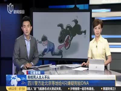 视频丨狗咬死人主人不认 警方赴北京等地给4只嫌疑狗验DNA
