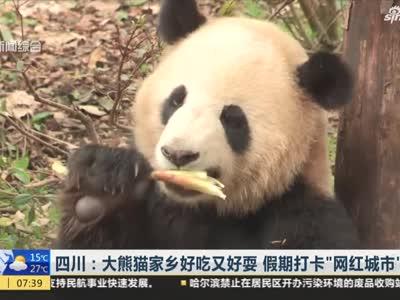 视频丨大熊猫家乡好吃又好耍 假期打卡网红城市成都