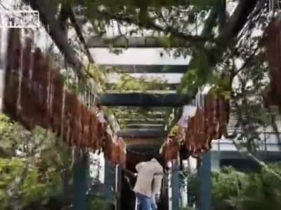 视频丨成都50米长廊挂满香肠腊肠 网友:最土豪长廊
