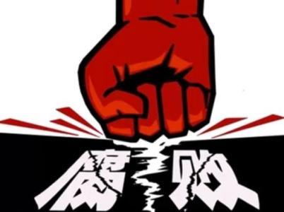 广安市前锋区广兴镇党委书记向中全接受纪律审查和监察调查