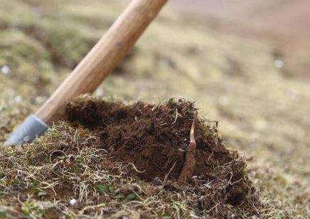 非法采挖草皮 甘孜理塘牧民遭罚1万并回填补种草皮