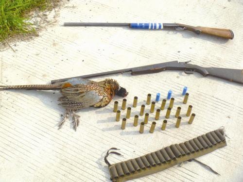 男子打猎误伤好友 因非法持有枪支被采取刑事强制措施