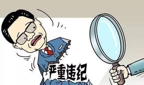 """德阳市罗江区行政审批局原副局长罗大雪被""""双开"""""""