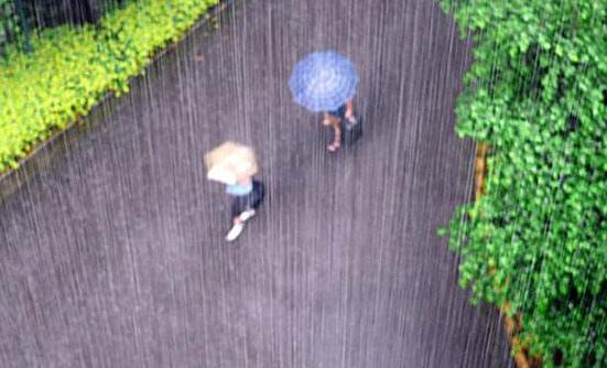 本周四川盆地将陷入闷湿模式 看看哪些地方被雨水点名了