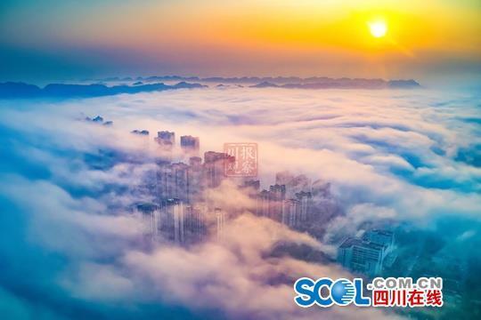 2020年雅安的第一波平流雾,美到了新高度!