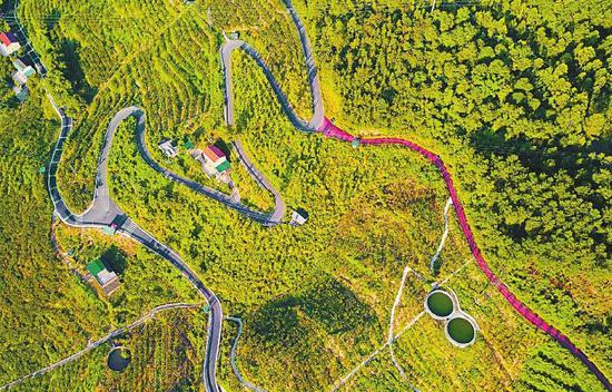 四川115条普通省道成网有了建设图 明确线路走向、具体位置