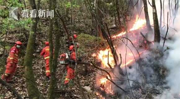多方力量协同 四川冕宁县森林火灾仍在扑救中