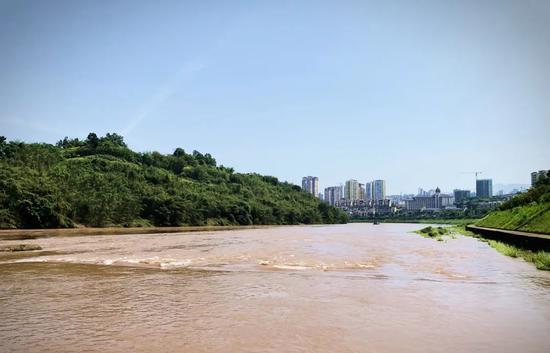 非法捕捞遭处罚 当事人将6万余尾增殖鱼苗放归赤水河