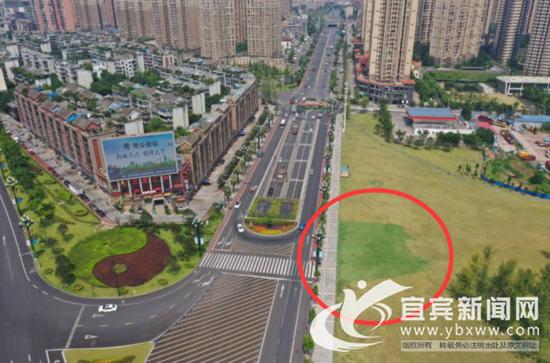 """泛黄的草坪还可以这样被""""拯救""""。(宜宾新闻网 黄凌 摄)"""