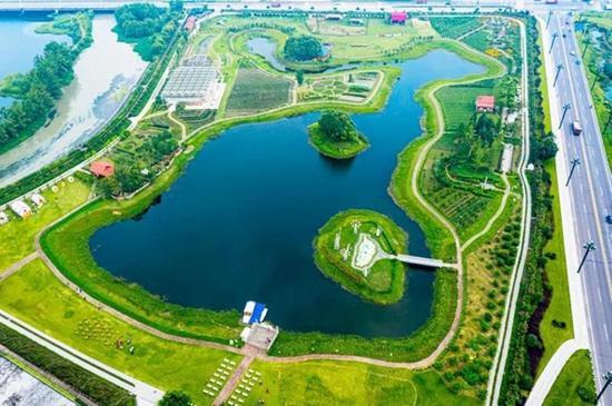 21家品牌房企打卡新津  实地体验公园城市