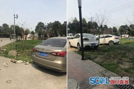 记者调查:离停车场约百米,汽车开进绿化带