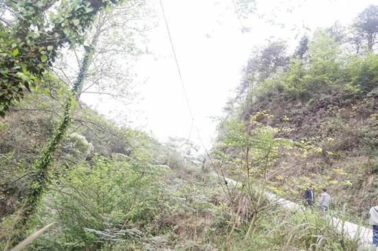 村民摔下悬崖被杂草挡住命悬一线 教师舍命救人