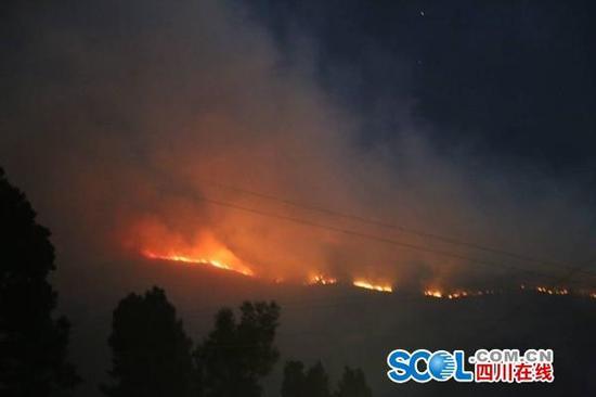 阿坝州森林消防支队供图