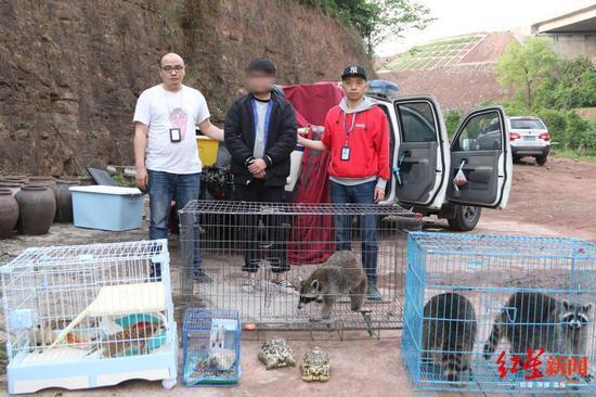 被泸州警方挡获的许某和解救的野生动物
