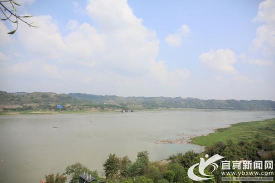 渔民上岸 长江又见飘鱼鱼群