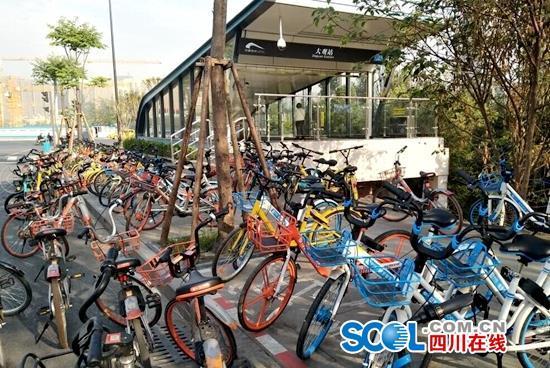 锦江区大观地铁站周边,摩拜单车、哈罗单车等散落停放,无人管理