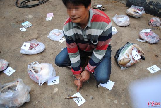 艾某某家查获的野生动物死体