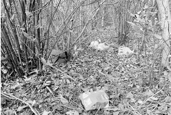 自然保护区内游客众多垃圾乱丢 谁在惊扰野生梅花鹿