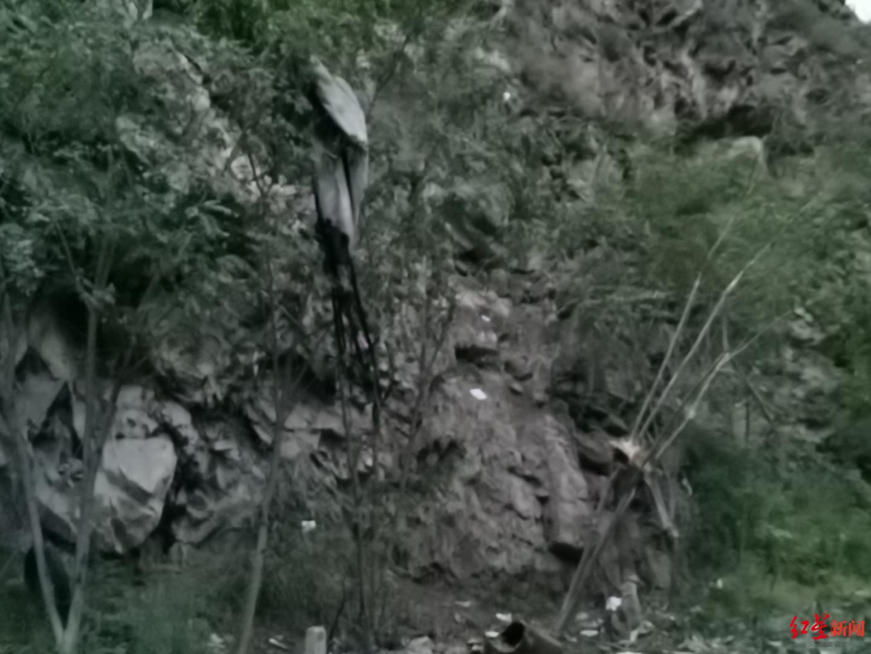 现场树枝上悬挂物