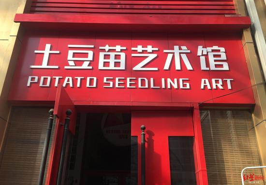 土豆苗艺术馆