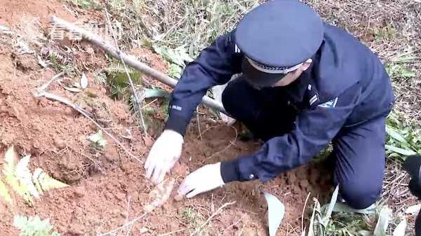 挖笋发现22cm长铁疙瘩 村民仔细一看马上报警