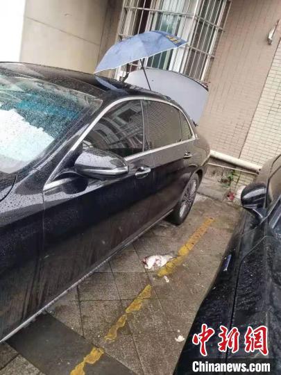 """被砸毁的奔驰车天窗和""""粉身碎骨""""的草鱼。宜宾市叙州区警方 供图"""