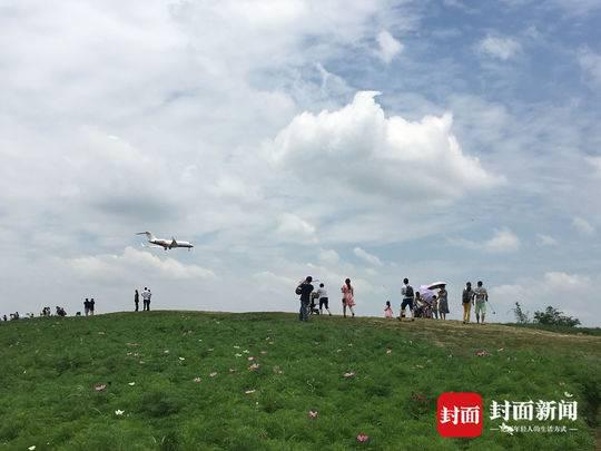围挡挡不住人流 赏花看飞机的市民另辟蹊径进入网红打卡地