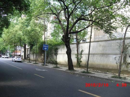 玉林街整治前图片