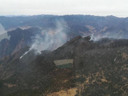 甘孜九龙森林火灾基本得到控制 32人撤离无人员伤亡