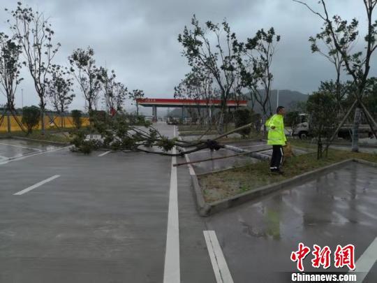 """台风""""利奇马""""将至 浙江启动防台风Ⅰ级应急响应"""